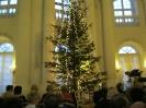 Koncert noworoczny w Rydzynie 18.01.2015