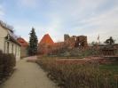 Wycieczka Gniezno-Toruń
